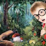 Беседа по теме «В лесу»