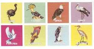 лото птицы