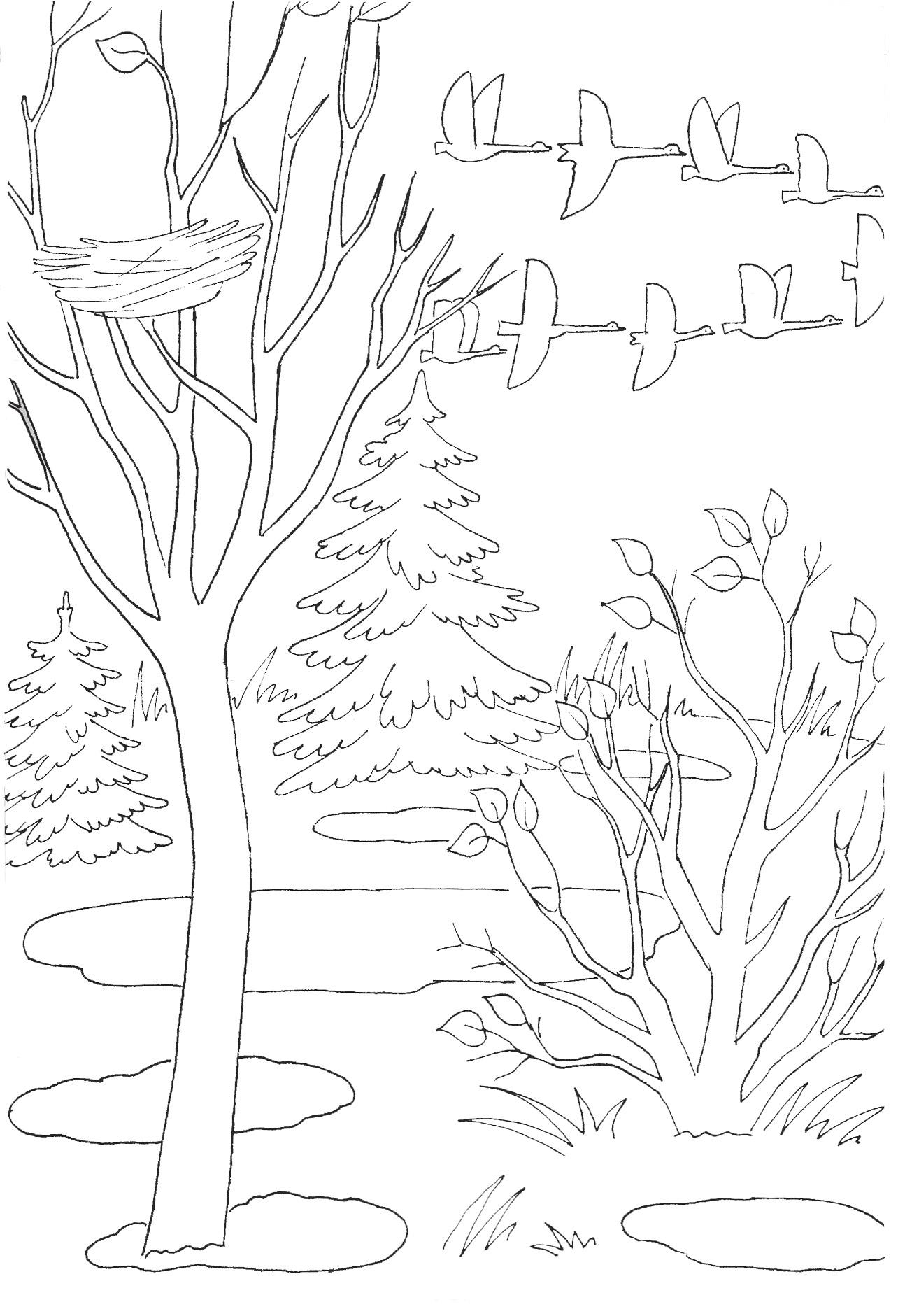 Детская раскраски про осень, февраля садик