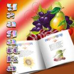 Загадки о растениях, овощах, фруктах, ягодах